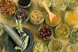 Sự khám phá ra vitamin và sự thiết yếu của chúng với cơ thể khỏe mạnh 1
