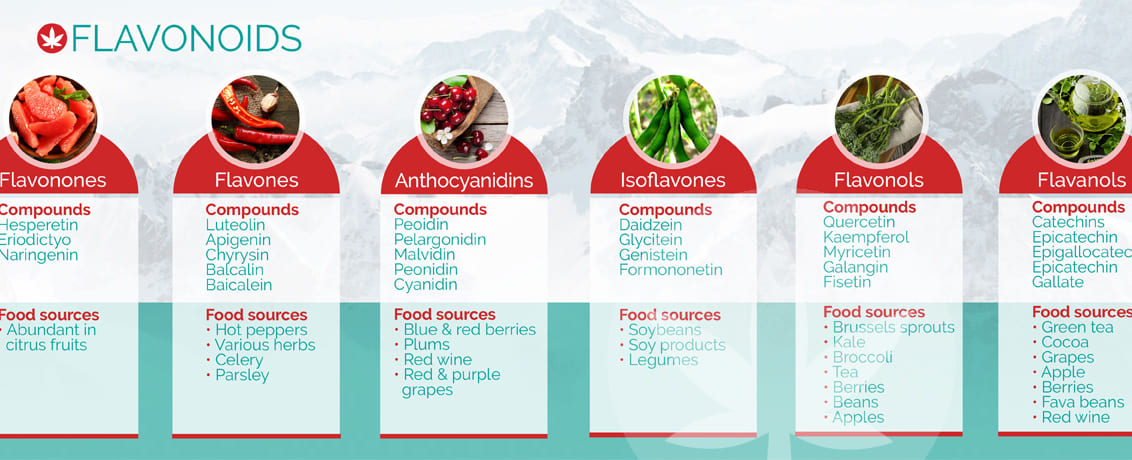 Flavonoid là gì? 1