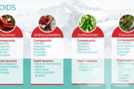Flavonoid là gì? 5