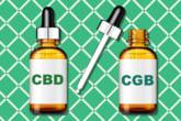 CBD vs CBG: So sánh nhiều lợi ích của CBD & CBG riêng rẽ và kết hợp 4